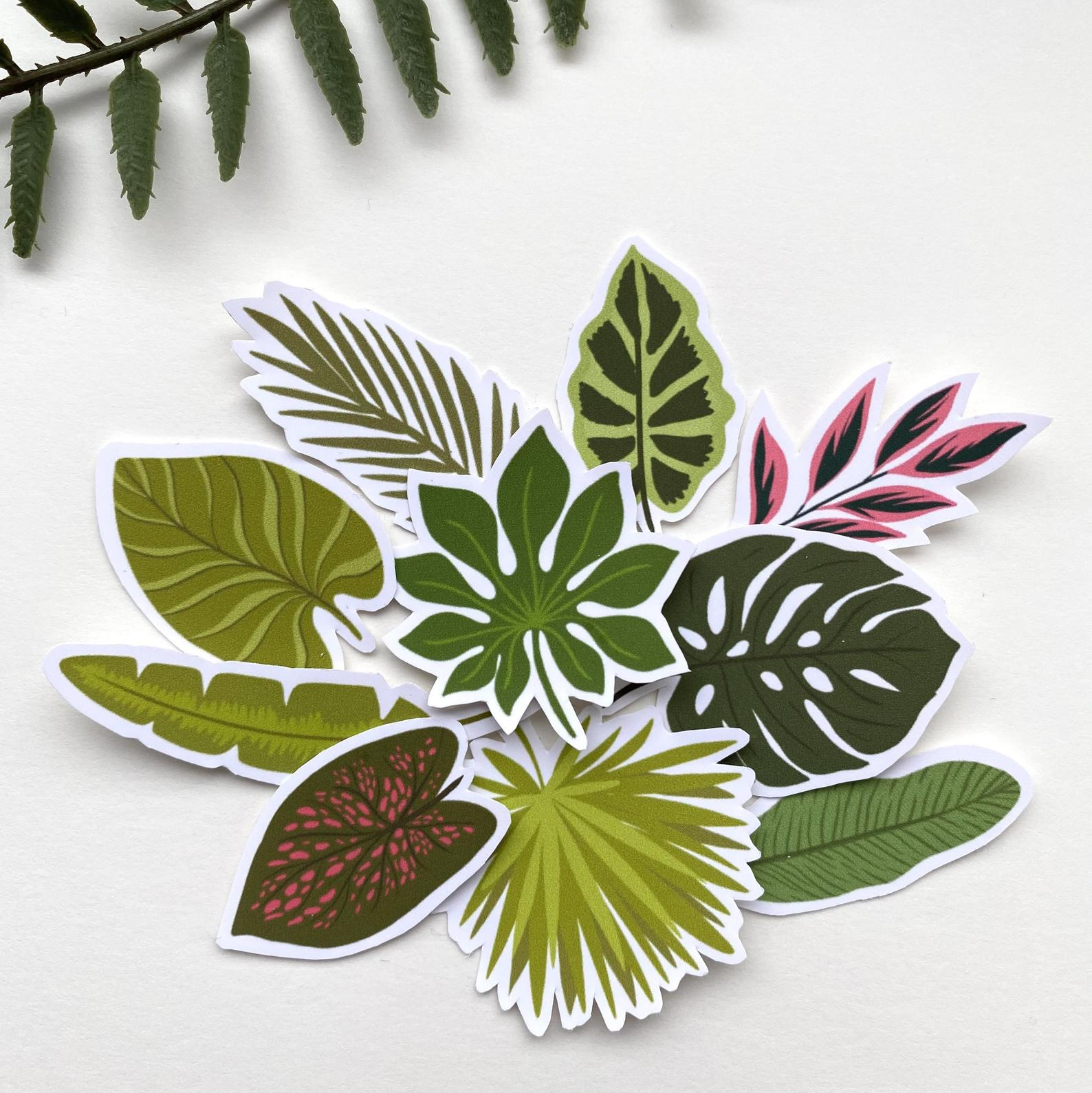 Tropical Leaves Sticker Set Theprintplatypus Com Choose from 600+ tropical leaves graphic resources and download in the form of png, eps, ai or psd. tropical leaves sticker set